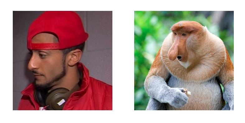 kaepernick nose monkey