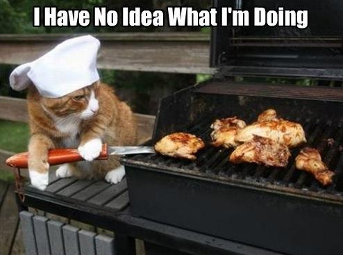 cat-grilling