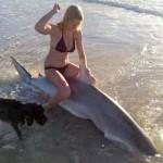 girl riding shark