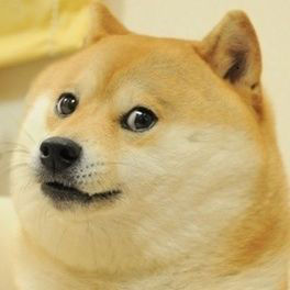 doge-original-meme