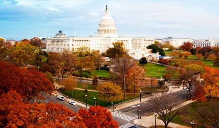 Fall-in-DC